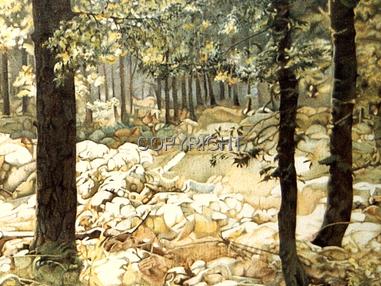 Denny Wood near Brockenhurst