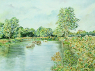Horses Drinking in the River Mole, Leatherhead