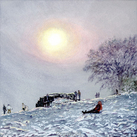 Winter's Chill on Box Hill